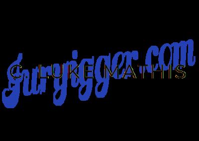 Juryrigger